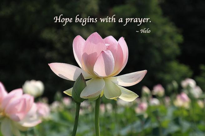 HopeBeginsWithAPrayerT