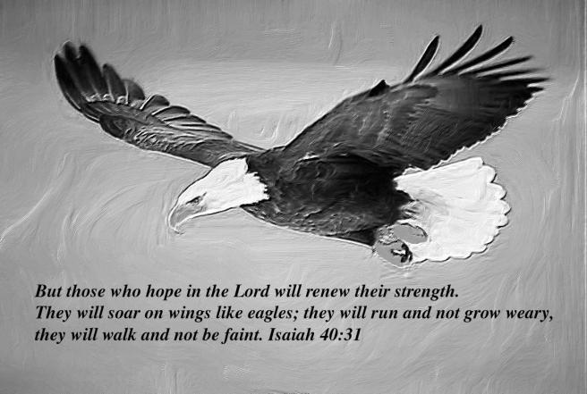 Eagle- Isaiah 40:31
